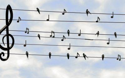 Concerto 18 Luglio Villa Ghirlanda – Cinisello Balsamo